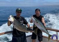 Redondo Beach Sportfishing  - Pescador - Yellowtail