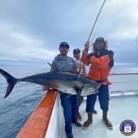 H&M Landing  - Grande - Bluefin Tuna