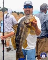 Redondo Beach Sportfishing  - Redondo Special - Calico Bass