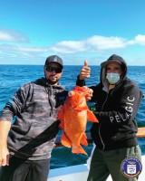 San Pedro 22nd Street Sportfishing - Pursuit