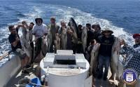 Channel Islands Sportfishing  - Cobra - White Seabass