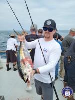 Seaforth  - Tribute - Yellowfin Tuna