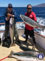Redondo Beach Sportfishing  - Pescador - White Seabass