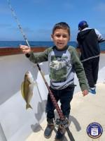 Channel Islands Sportfishing  - Mirage - Whitefish