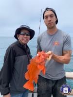 Sea Landing  - Coral Sea - Rockfish