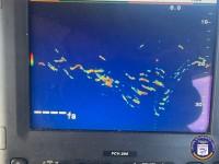 Pierpoint Landing - Enterprise