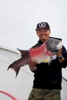 San Pedro 22nd Street Sportfishing  - Freedom - Sheephead