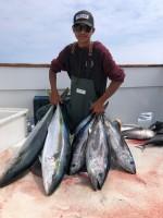 San Pedro 22nd Street Sportfishing  - Freedom - Bluefin Tuna