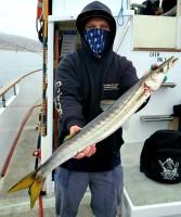 Channel Islands Sportfishing - Cobra