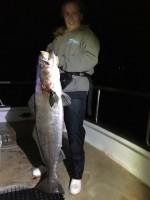 San Pedro 22nd Street Sportfishing - Fortune