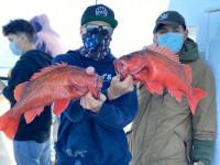 Ventura Sportfishing - Island Spirit
