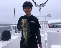 H&M Landing  - Premier - Calico Bass