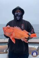 Sea Landing  - Coral Sea - Red Snapper