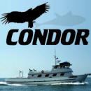Condor Sportfishing