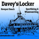 Daveys Locker Sportfishing